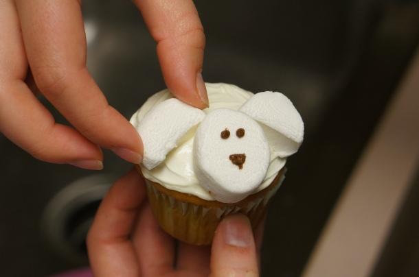 adorable-animal-cupcakes